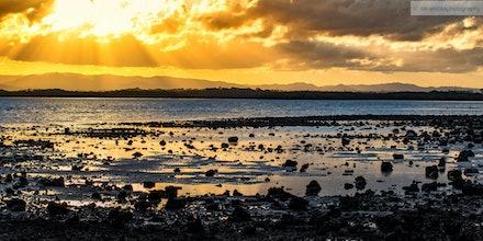 Bramble Bay, QLD