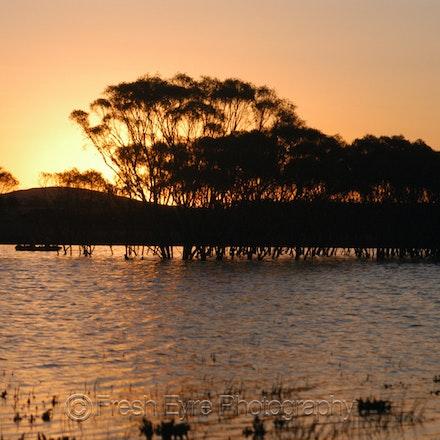 07Lagns42_021_Kerri Cliff - Lake in a paddock after unusually heavy summer rain