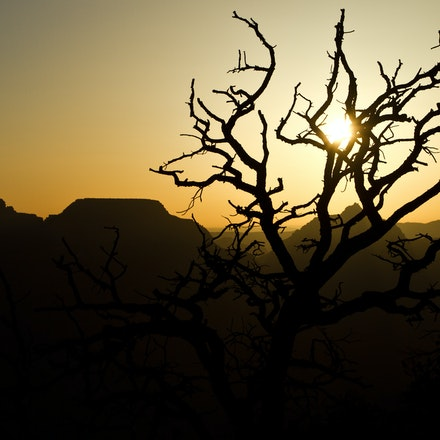 1004_Grand_Canyon_061