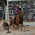 Narrandera APRA Rodeo 2018 - Slack Session