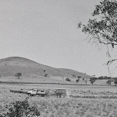 Farm - Australian farm life.