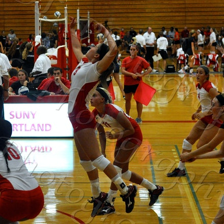 Volleyball vs Rochester (2015)