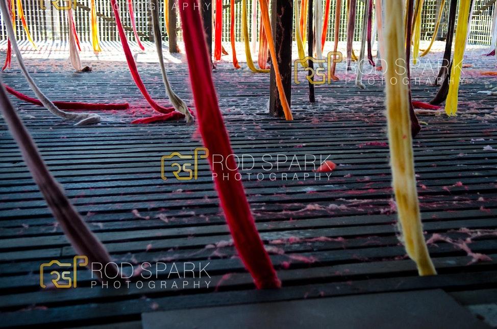 RodSpark-CockatooIsland-5479