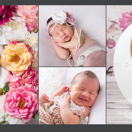 Violet's Newborn