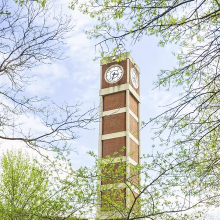 Clock Tower, University of Louisville/Color Photo_2436_6517 - Photo by Campus Photos USA. The University of Louisville Clock Tower is located on the campus...
