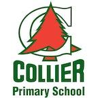 Collier Primary School