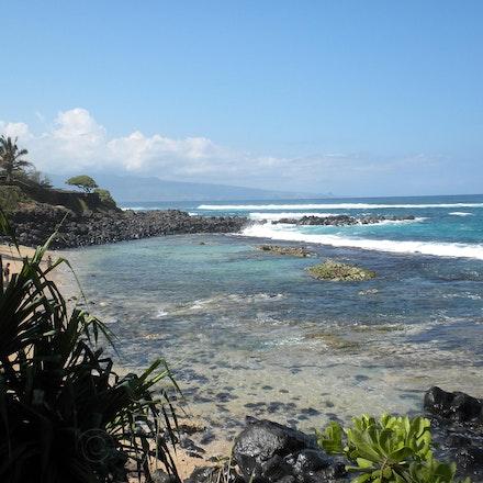 Maui Surf