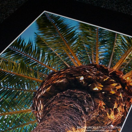 "Matted Print - Image printed on metallic paper with lustre coating that gives the picture a 3D appearance. Print is matted between a 1/8"" foam core board..."