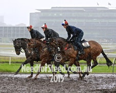 24 SEPT RANDWICK TRACK WORK