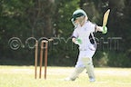 Super 8's Cricket U12's (24-1-2010)