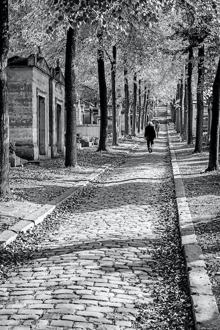 044 Paris Day 12 230915-0485-Edit - Père Lachaise Cemetery in Paris is such a great place just to walk around, may famous peoples graves can be found here...