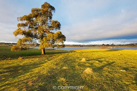Oberon-2-Edit - Sunrise near Oberon, NSW, Australia.