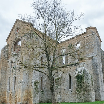 106 Abbey of St Galgano 191115-4095-Edit