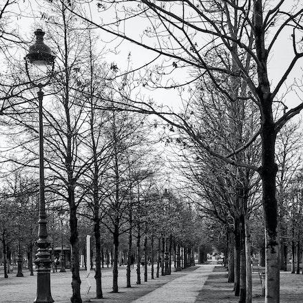 258 - Paris - 1st - 241216-5338-Edit