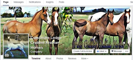Comanche Lodge Facebook Cover Image - A stylised, composite of two images for something a little different. Incorporating the main product brand. The profile...