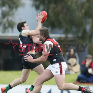 EDFL: Greenvale v Pascoe Vale - Pictures by Shawn Smits