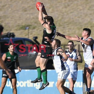 EDFL, Premier Division, Greenvale vs Avondale Heights - EDFL, Premier Division, Greenvale vs Avondale Heights. Pictures Damian Visentini
