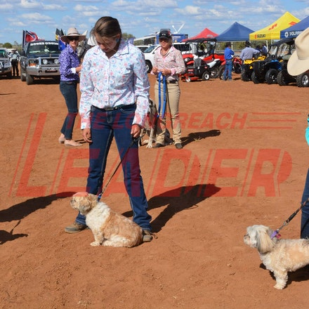 170526_DSC_0867 - Action at the 2017 Isisford Sheep and Wool Show