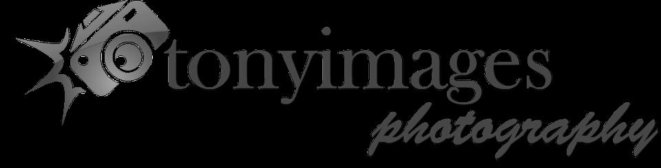 TonyImages